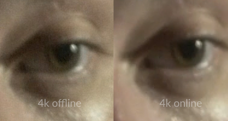 Is Downscaling 4K to 1080p Worth It After Online Compression? — 4K Comparisons
