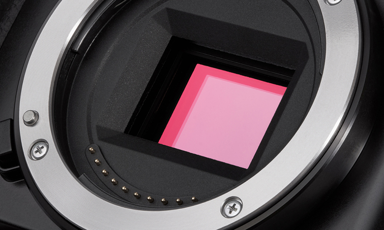 Should You Upgrade the Canon 7D to the 5D Mark IV? — Full Frame Sensor