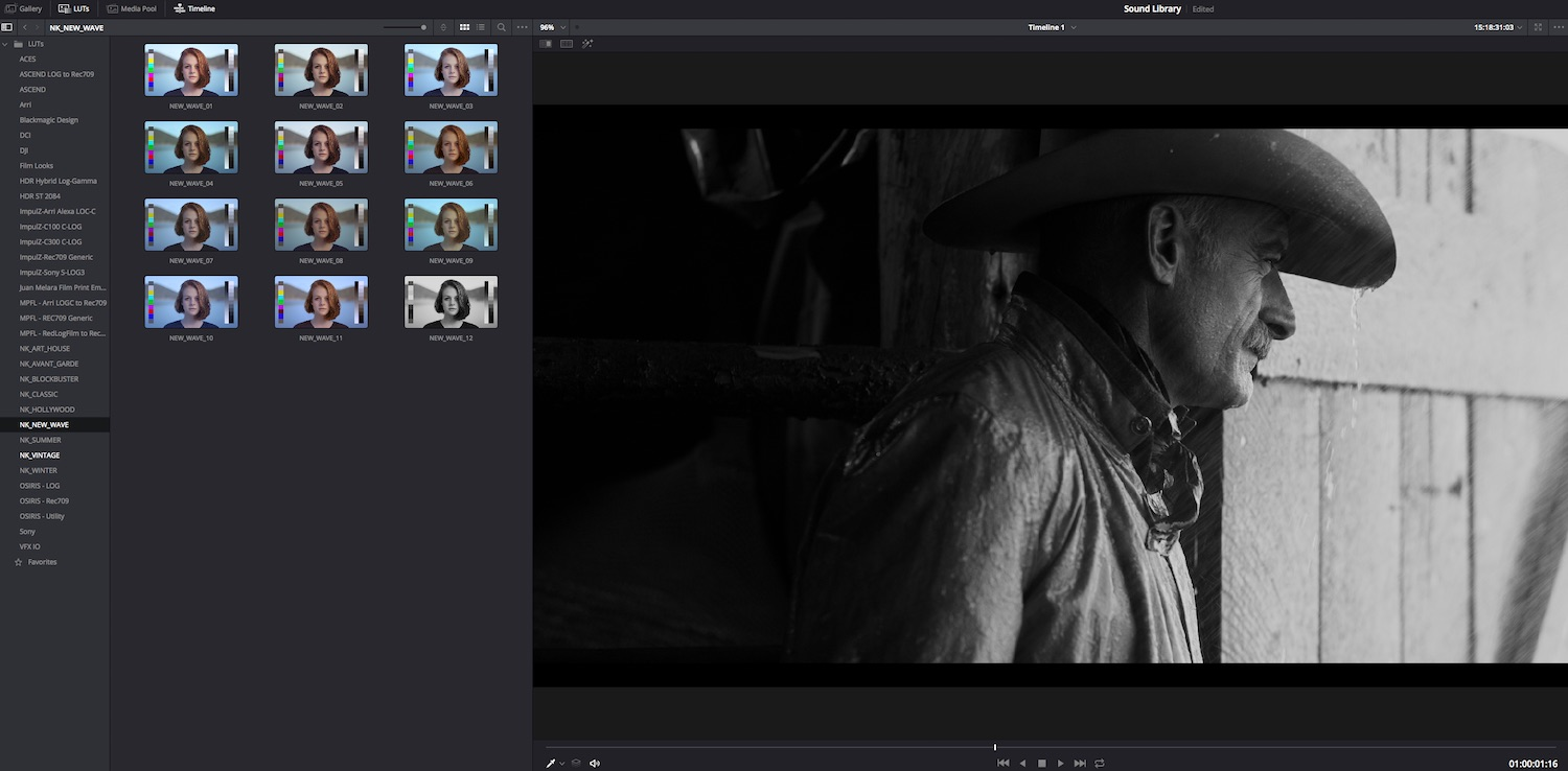 using the lut browser in resolve 15