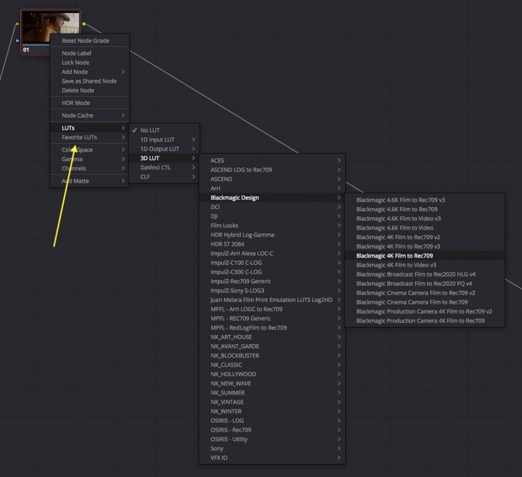 Everything You Need to Know About the LUT Browser in DaVinci Resolve 15 — Remove LUT