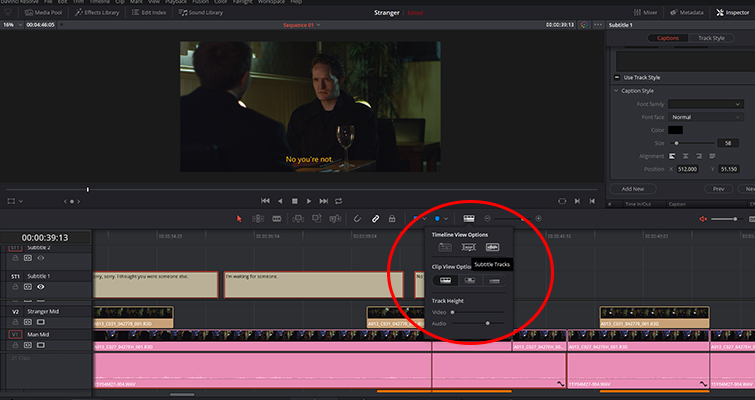 Revamped Text Features in the New DaVinci Resolve 15 — View Options
