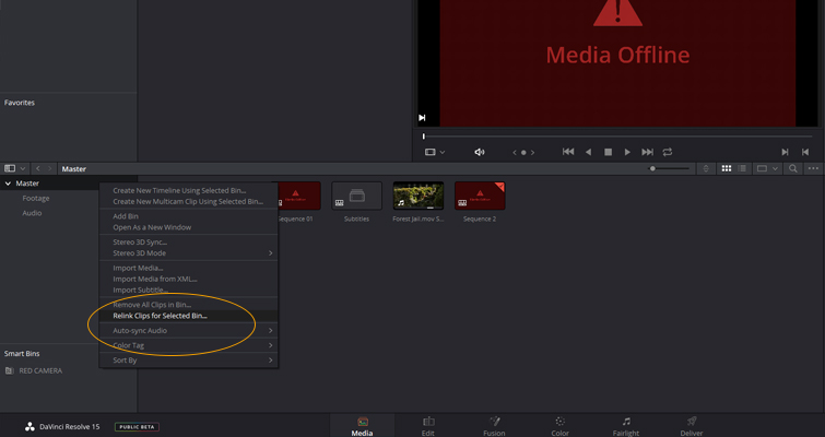 What You Need to Know about Working with Project Files in DaVinci Resolve — Relink Clips