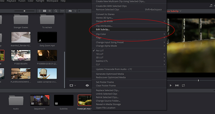 The New Features of DaVinci Resolve 15's Edit Page — Create Subclips