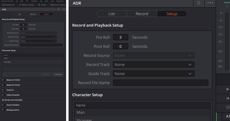 Video Tutorial: How to Configure The ADR Panel in Resolve 15 — Sub-Panels