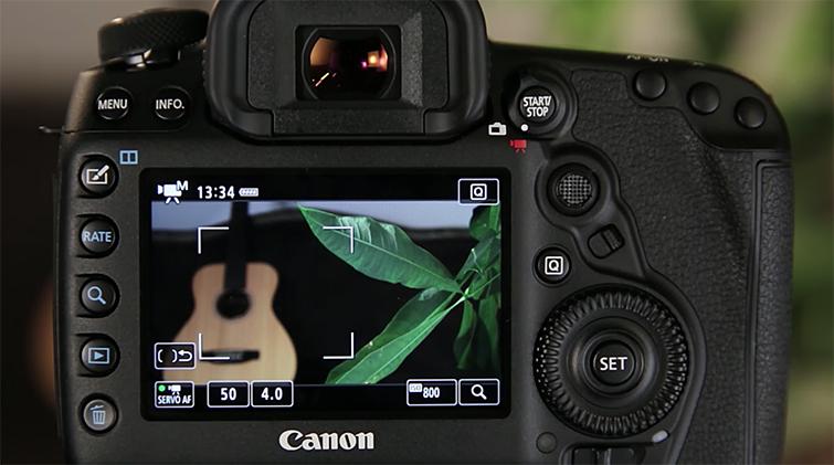 Using Canon 5D Mark IV's Auto-Focus While Shooting Video — FlexiZone Multi