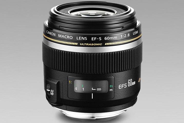 Buyer's Guide: The Best Macro Lenses on the Market — Canon 60mm