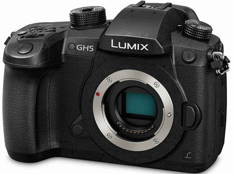 The Best Mirrorless Cameras for Filmmakers and Videographers — Lumix gh5