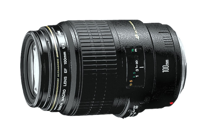 Buyer's Guide: The Best Macro Lenses on the Market — Canon 100mm