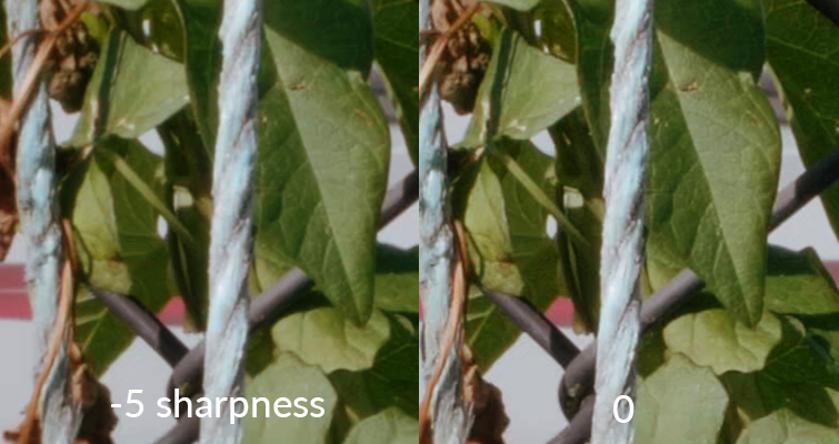 How to Soften Your Sharp 4K DSLR Video Footage — Sharpness Difference Up Close