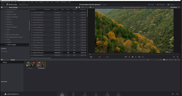 DaVinci Resolve 15 Video Crash Course — The Media Page — Importing Media