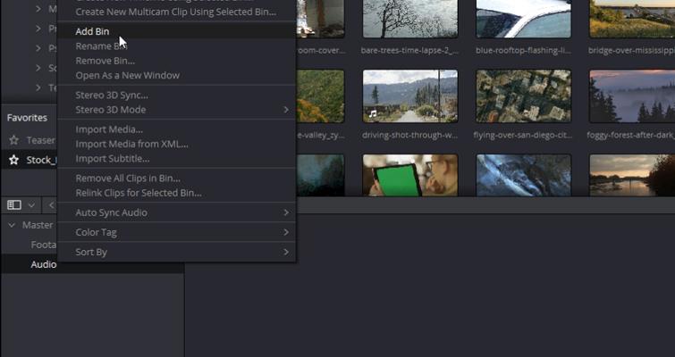 DaVinci Resolve 15 Video Crash Course — The Media Page — Media Organization