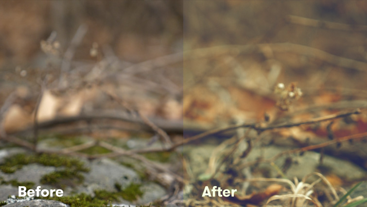 Better-Results-using-LUTs-with-Lumetri-Color-Creative-LUT