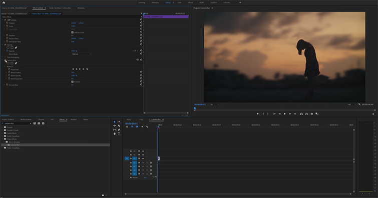 Roundup: 5 Awesome Editing Effects in Adobe Premiere Pro — Camera Blur and Mask