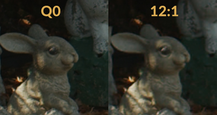 BMPCC4K Tips: The Difference Between Using Constant Bitrate Vs. Constant Quality - BMD RAW Comparisons
