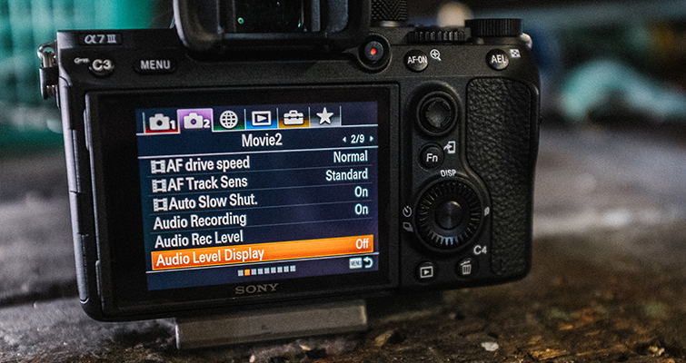 Get Ready to Film with the Sony A7 III Using These Settings — Display Settings