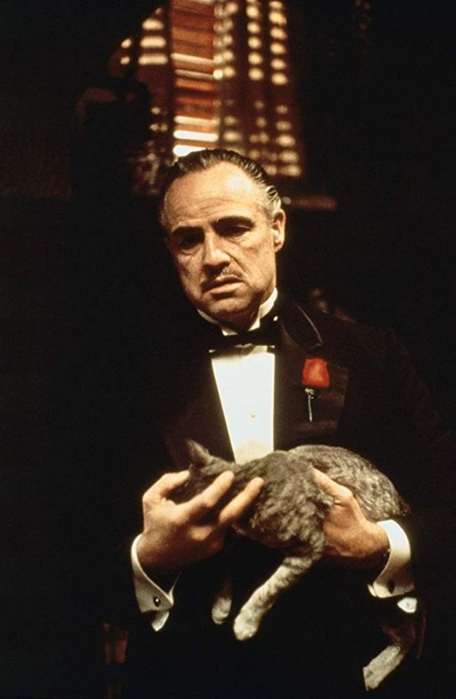 Marlon Brando in The Godfather