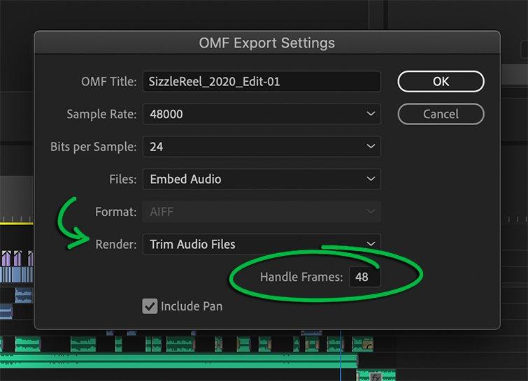 Premiere Pro: Handle Frames