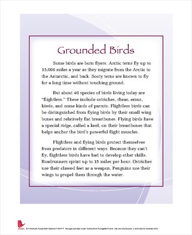 Grounded Birds