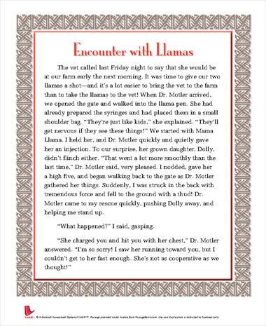 Encounter with Llamas