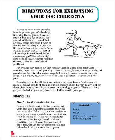 Directions for Exercising Your Dog Correctly