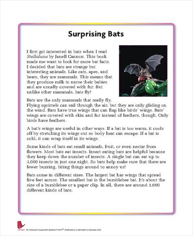 Surprising Bats