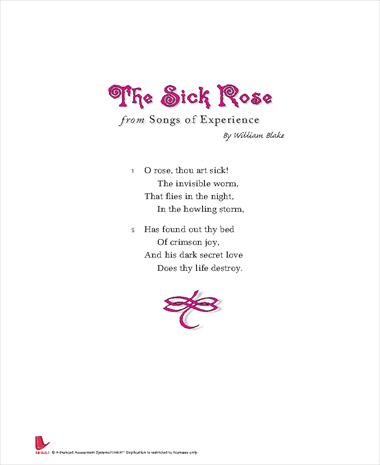the sick rose essay