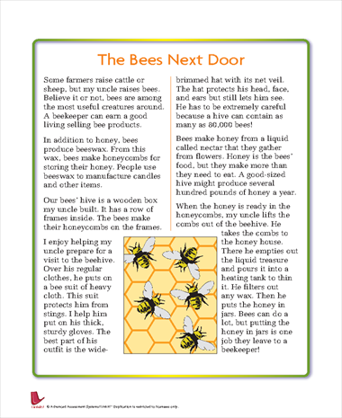 The Bees Next Door