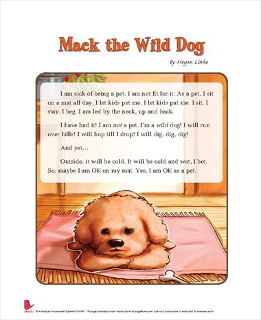 Mack the Wild Dog
