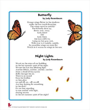 Butterfly/Night Lights