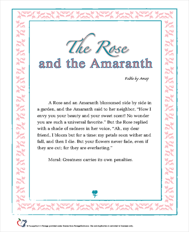 The Rose and the Amaranth
