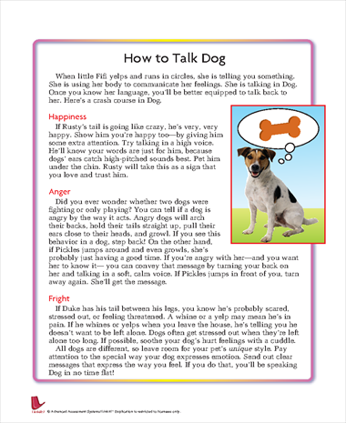 How to Talk Dog