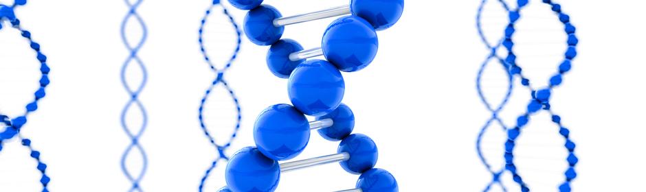 Banner 6 - Molecular Structure