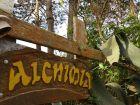 Complejo Alchimia y Africa Punta del Diablo