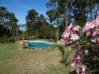 Complejo Bungalows Punta Colorada Punta Colorada
