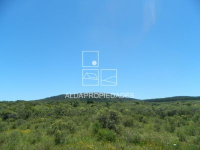 Terrenos Terreno en Punta Colorada - TE 200 523 Piriápolis