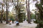 Camping Enrique Davyt Balnearios de Colonia