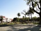 Outdoor activities Plaza Mayor  Colonia