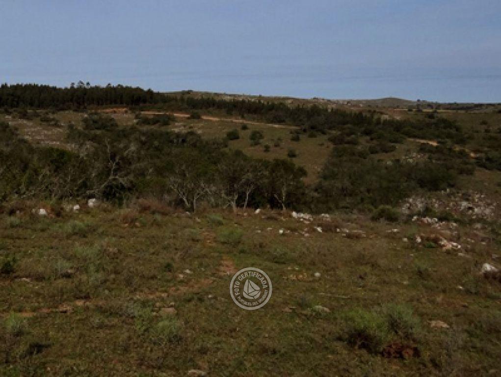 Terrenos terreno 1 hect rea 10000 m2 villa serrana venta - Cuanto cuesta vallar un terreno ...