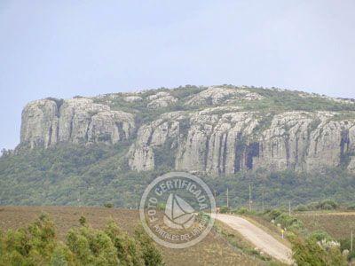 Cerro Arequita - Bosque de Ombúes