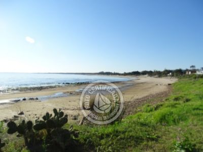 Playa Verde