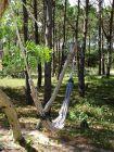 Cabaña La del Bosque Punta del Diablo