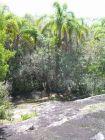 Terrenos Campo en Garzón Punta del Diablo