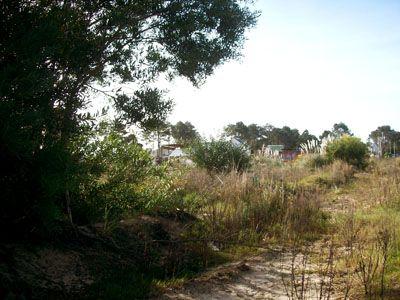 Terrenos Manz. 2 Solar 15  Punta del Diablo