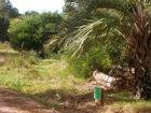 Terrenos Manz. 6 Solares 1 , 2 , 3 , y 4  Punta del Diablo