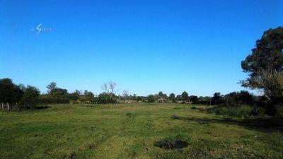 Campo en San Carlos ref. 622