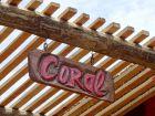 Mar Gordo - Coral - Punta del Diablo