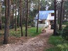 Casa del bosque