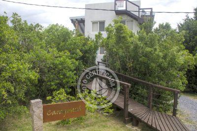 Caraguata - Punta Negra