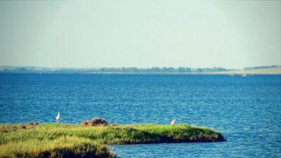 Laguna Merín: Un nombre pequeño para una laguna enorme