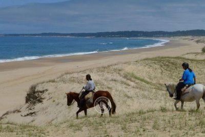 Gran remate de terrenos en los mejores balnearios de Uruguay!
